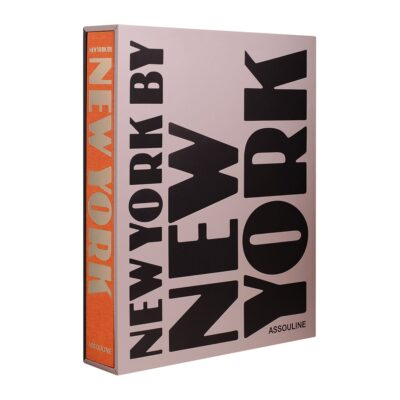 new-york-by-new-york-book